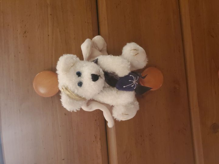 boyds bears Collection Image