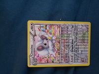 pokemon rc19/rc25