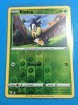 Pokemon Card - Blipbug REV HOLO 017/163 Battle Styles - NM/MINT