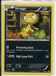 Pokemon CCG - Scraggy Promo BW25